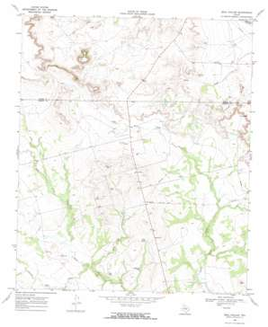 Beal Hollow USGS topographic map 32101h4
