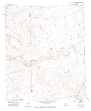 Scharbauer Ranch topo map