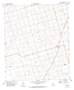 Patricia topo map