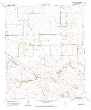 Seminole Ne topo map