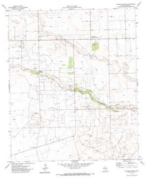 Paynes Corner topo map
