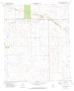Paynes Corner Nw topo map