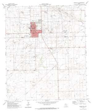 Denver City topo map