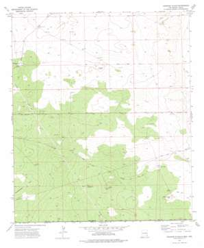 Andrews Place USGS topographic map 32103a4