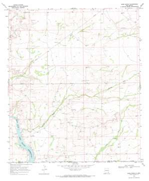 Ross Ranch topo map