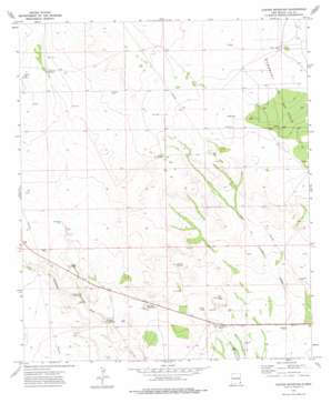 Custer Mountain topo map