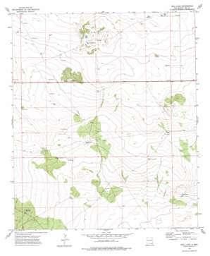 Bell Lake topo map