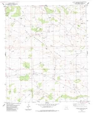Laguna Gatuna Nw topo map