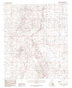 Hackberry Lake USGS topographic map 32103f8