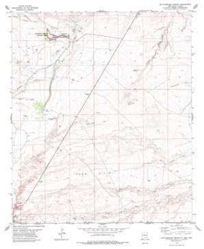 Rattlesnake Spring topo map