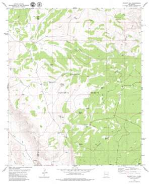 Pickett Hill topo map