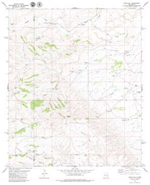 Texas Hill topo map
