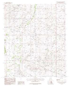 Illinois Camp Ne topo map