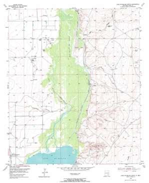 Lake Mcmillan North topo map