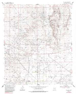 Red Lake topo map