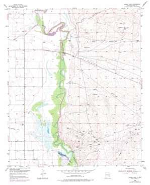 Spring Lake topo map