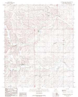 Sagebrush Valley W. topo map