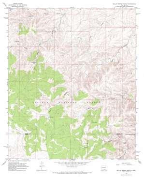 Bullis Spring Ranch USGS topographic map 32105e1