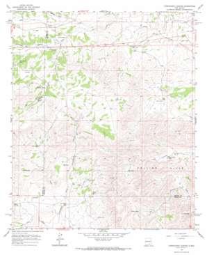 Cornucopia Canyon USGS topographic map 32105e3