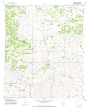 Pinon topo map