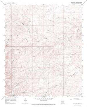 Lewis Peak Ne topo map