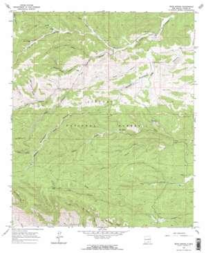 Bear Spring topo map