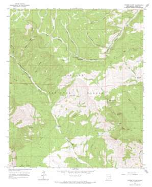 Rogers Ruins topo map