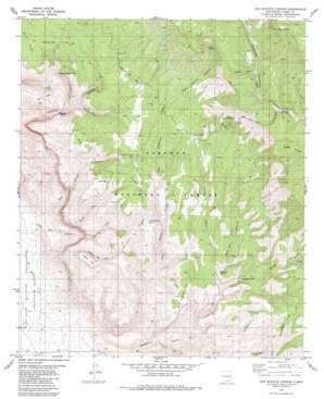 Bug Scuffle Canyon topo map