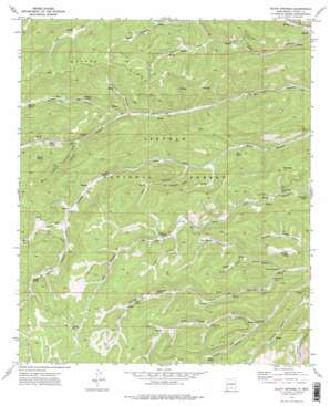 Bluff Springs topo map