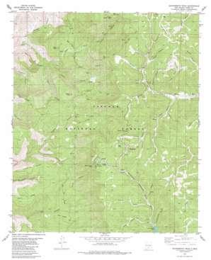 Sacramento Peak topo map
