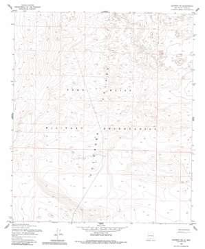 Newman Ne topo map