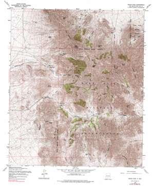 Organ Peak topo map