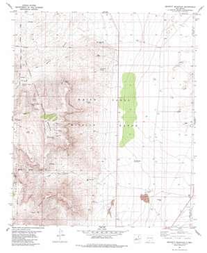 Bennett Mountain topo map