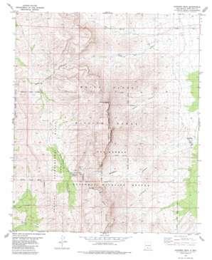Gardner Peak topo map
