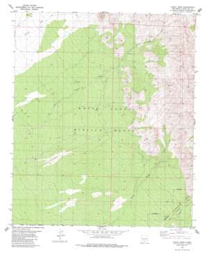 Fleck Draw topo map