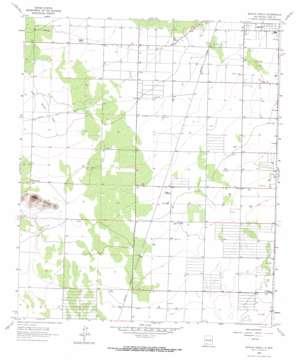 Bowlin Ranch topo map