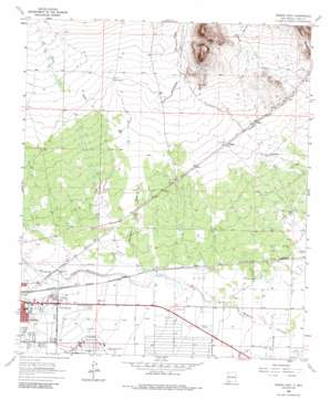Deming East topo map