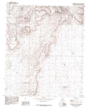 Magdalena Peak topo map