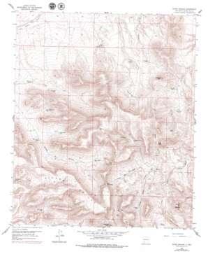 Souse Springs topo map