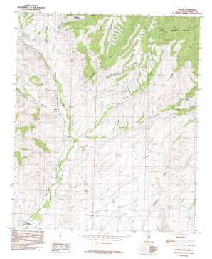 Dwyer topo map