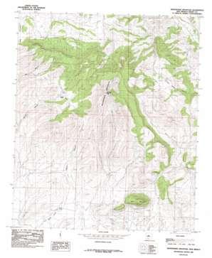 Whitehorse Mountain USGS topographic map 32107f8