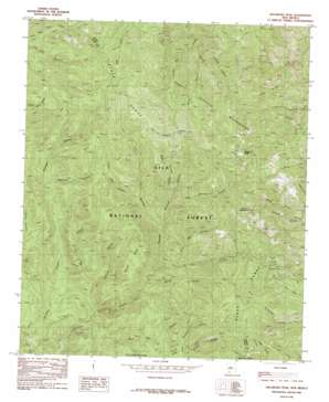 Hillsboro Peak topo map