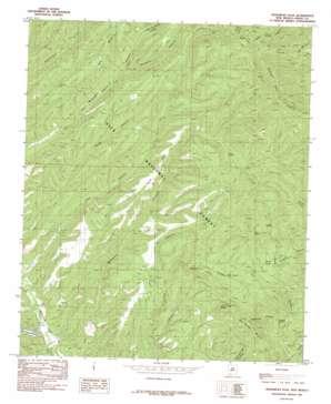 Hendricks Peak topo map