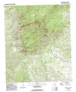 Burro Peak topo map