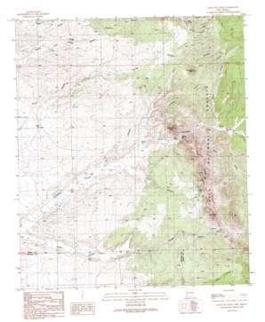 Eagle Eye Peak topo map