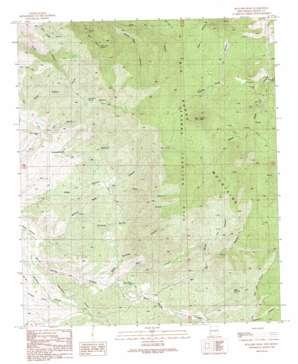 Bullard Peak topo map