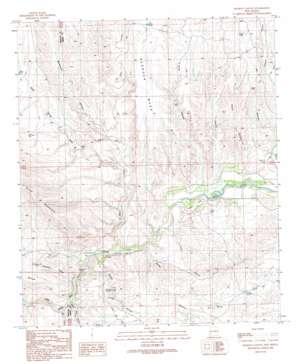 Nichols Canyon topo map