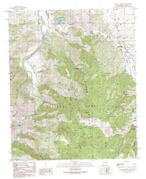Mangas Springs topo map