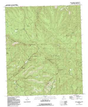 Twin Sisters topo map