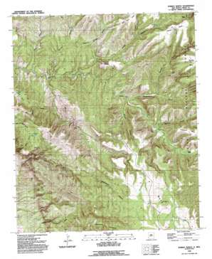 Dorsey Ranch USGS topographic map 32108h4